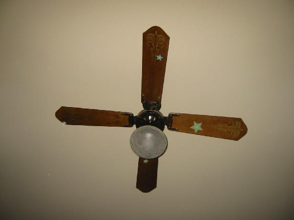 The Hunter Fantasy Flyer Ceiling Fan